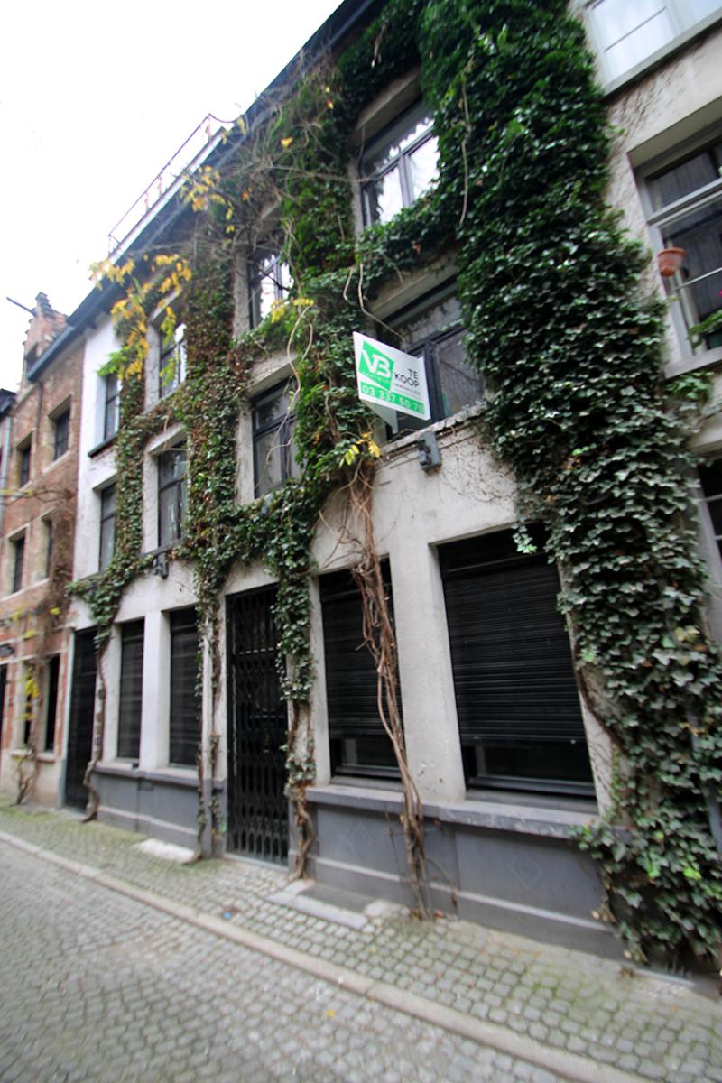 Prachtig opbrengsteigendom in de historische stadskern van Antwerpen op enkele passen van de Groenplaats! afbeelding 3