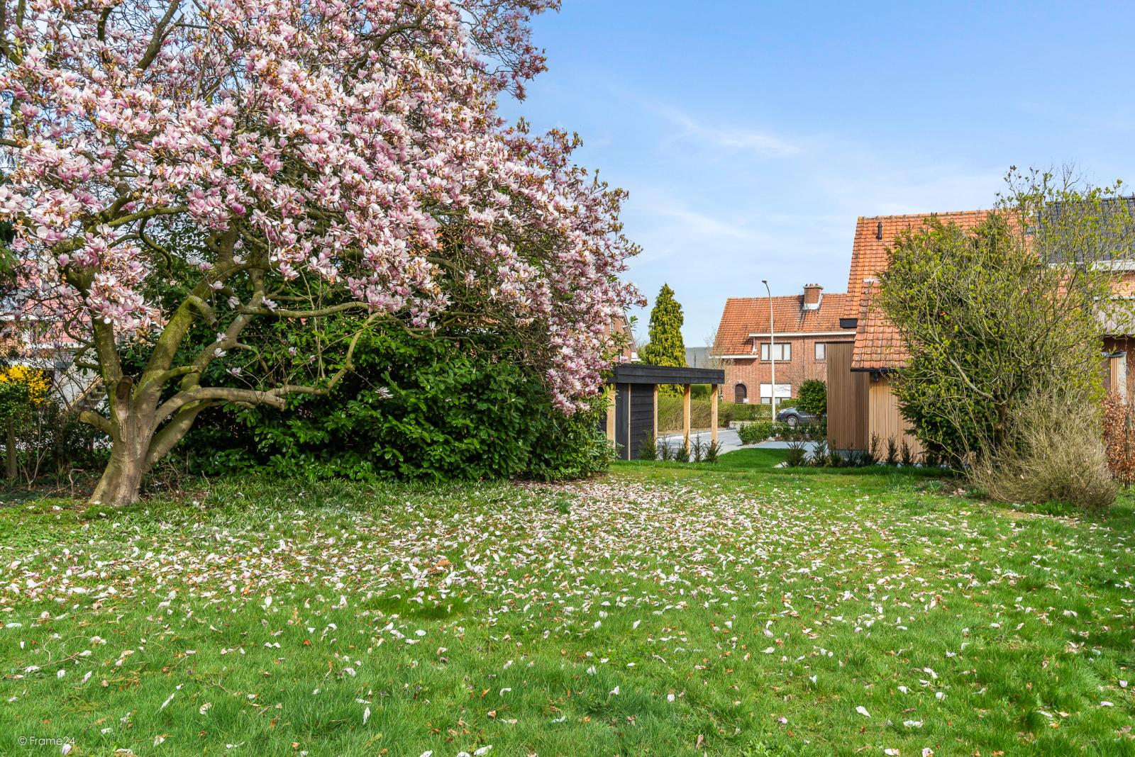 Prachtige, gerenoveerde halfopen woning met 3 slaapkamers en grote tuin afbeelding 13