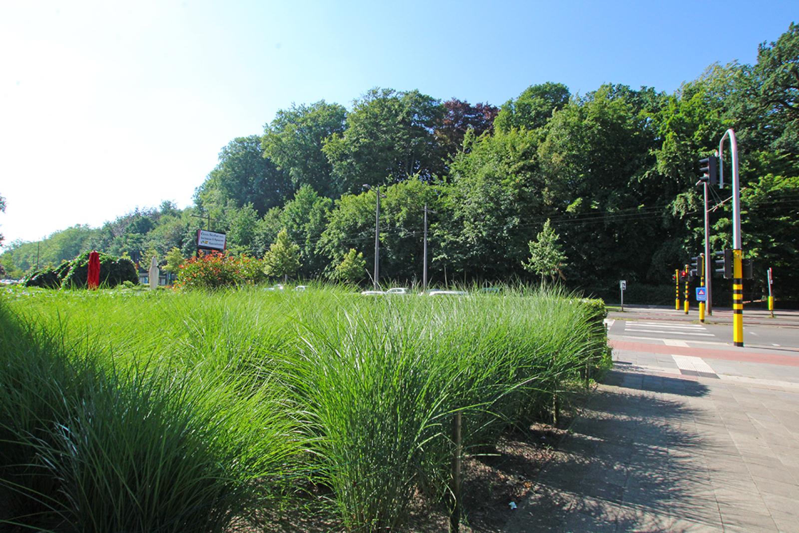Ruim dakappartement (120m²) met 2 terrassen nabij het park Ter Rivierenhof! afbeelding 27