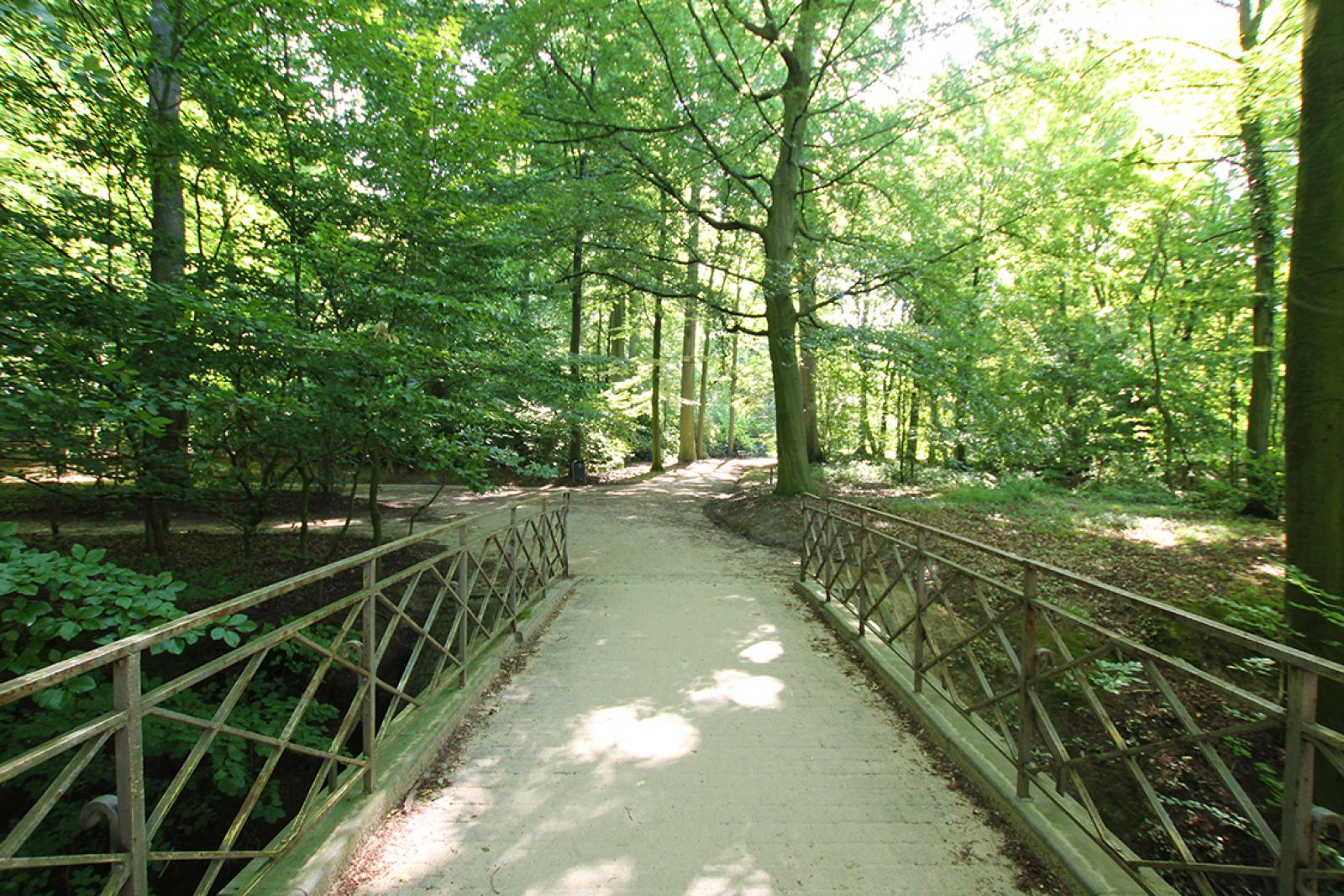 Ruim dakappartement (120m²) met 2 terrassen nabij het park Ter Rivierenhof! afbeelding 31