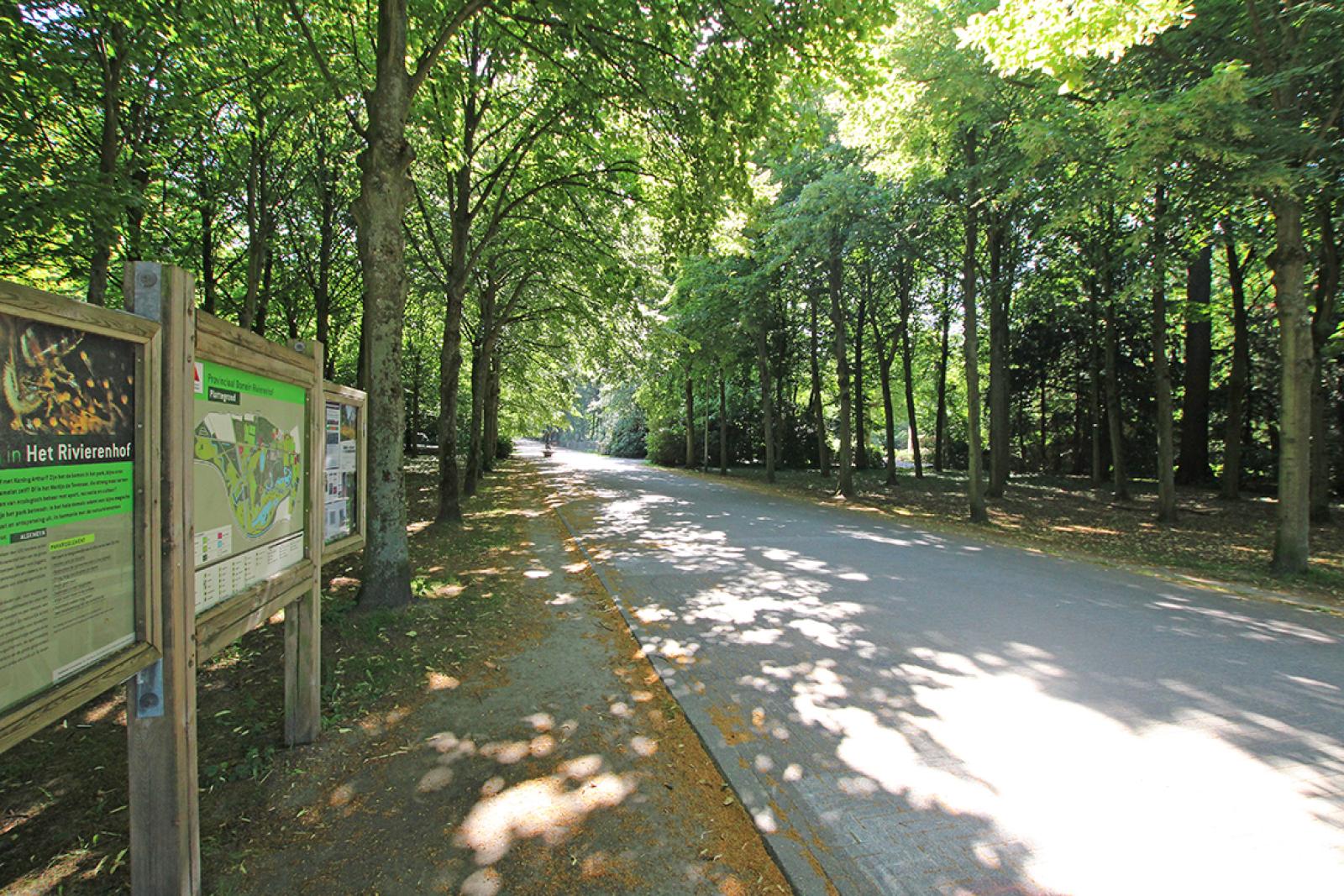 Ruim dakappartement (120m²) met 2 terrassen nabij het park Ter Rivierenhof! afbeelding 38