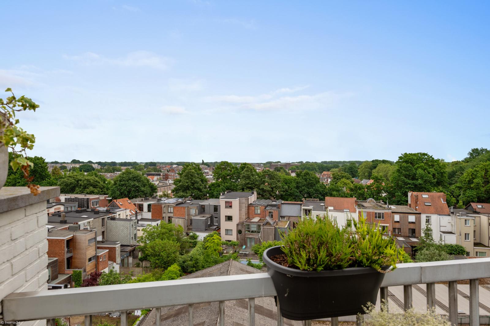 Ruim dakappartement (120m²) met 2 terrassen nabij het park Ter Rivierenhof! afbeelding 21