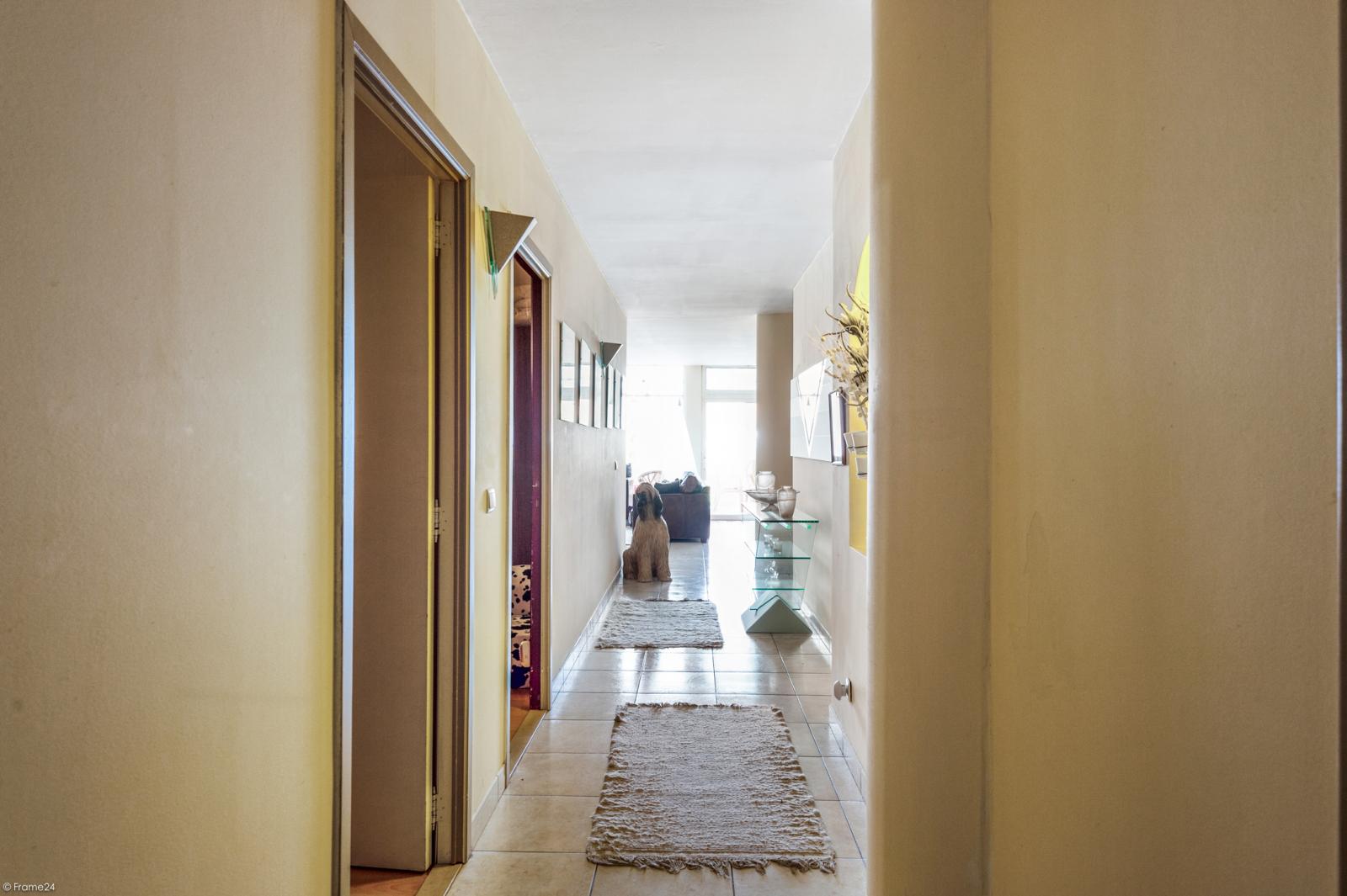 Riant gelijkvloers appartement met aparte studio en gezellige tuin te Deurne-Zuid! afbeelding 14