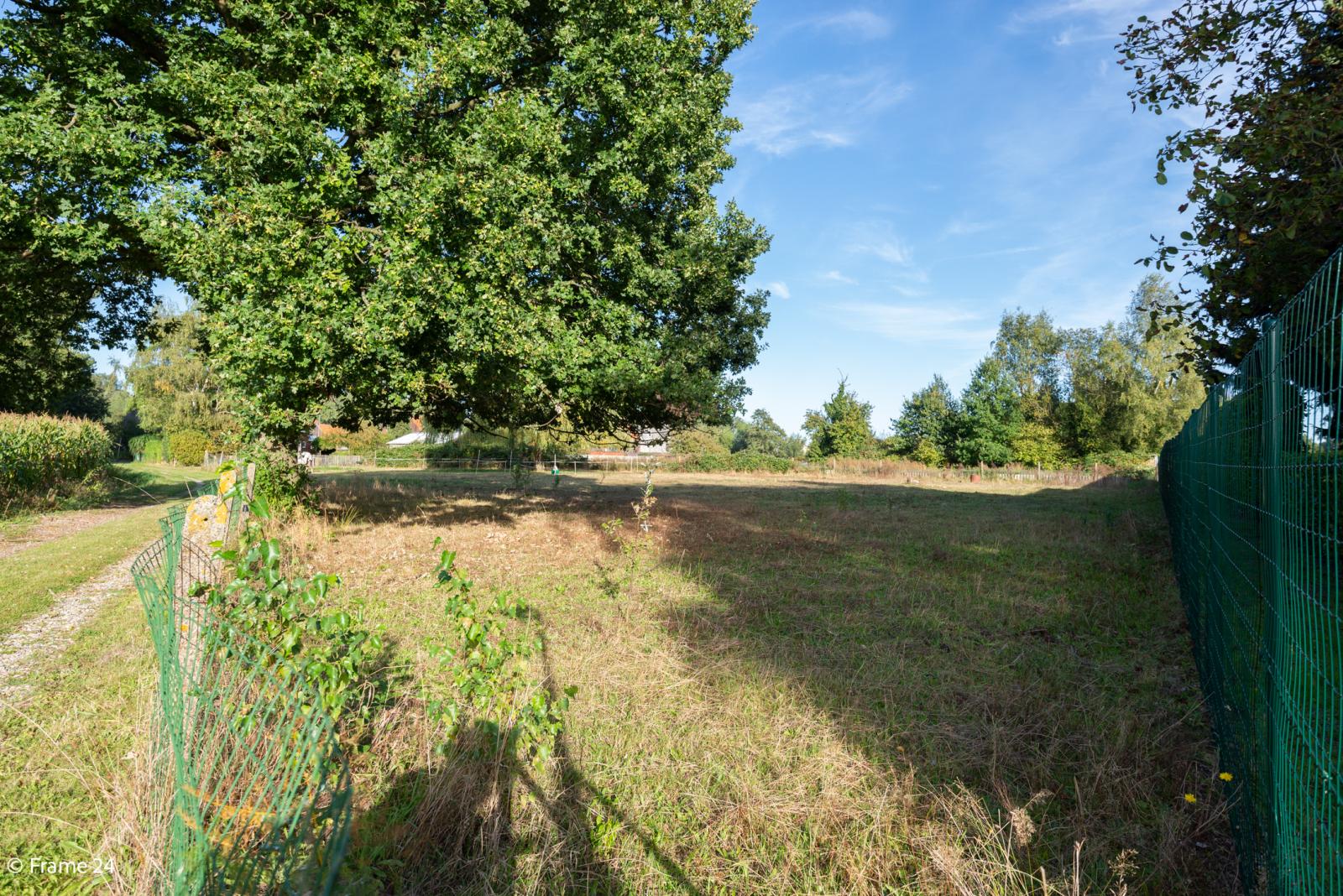 Mooie woning met grote weide (2.700 m²) te Wommelgem. Ideaal voor het houden van paarden of schapen! afbeelding 33