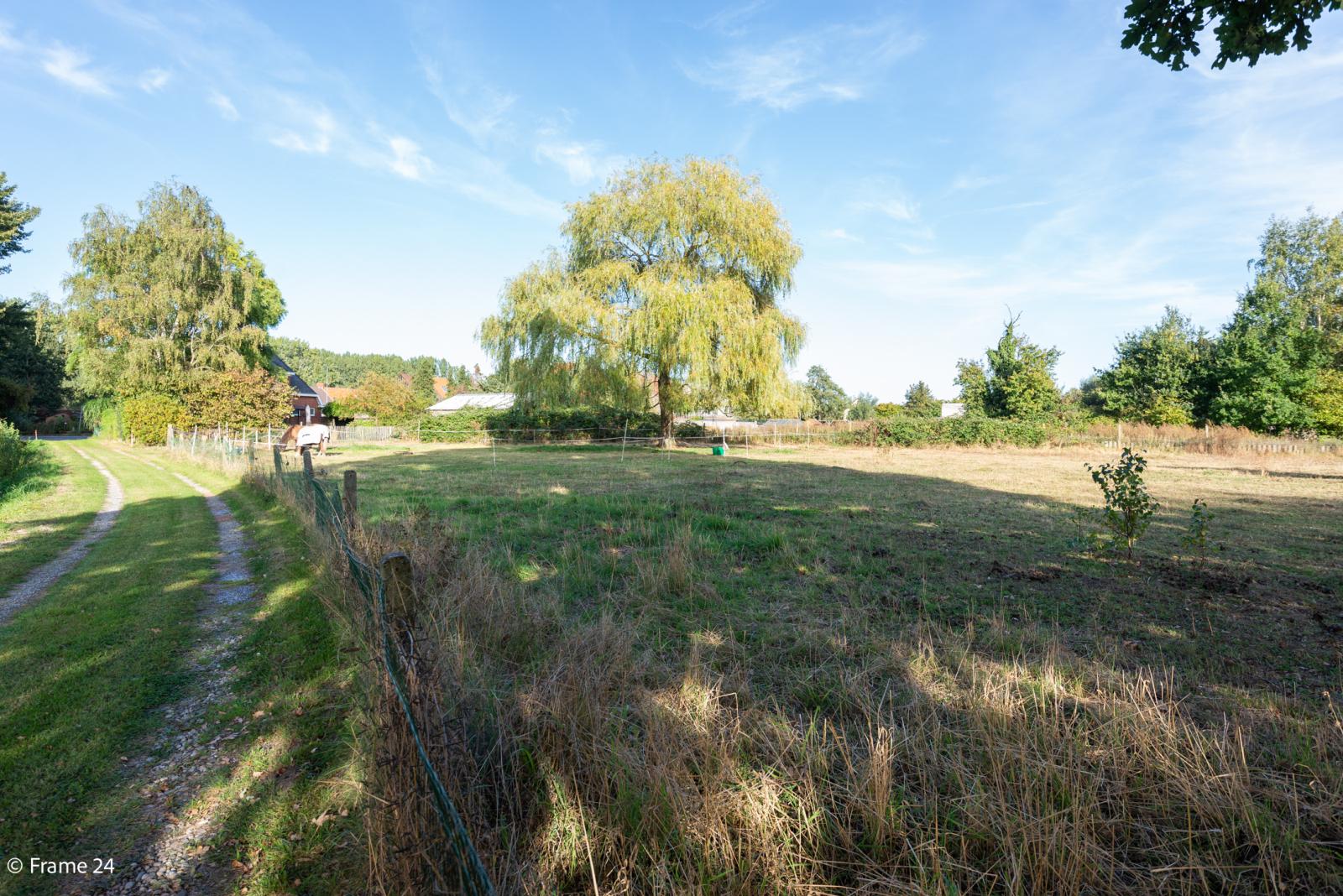 Mooie woning met grote weide (2.700 m²) te Wommelgem. Ideaal voor het houden van paarden of schapen! afbeelding 34