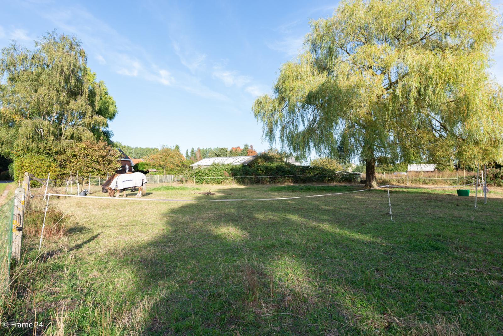 Mooie woning met grote weide (2.700 m²) te Wommelgem. Ideaal voor het houden van paarden of schapen! afbeelding 35
