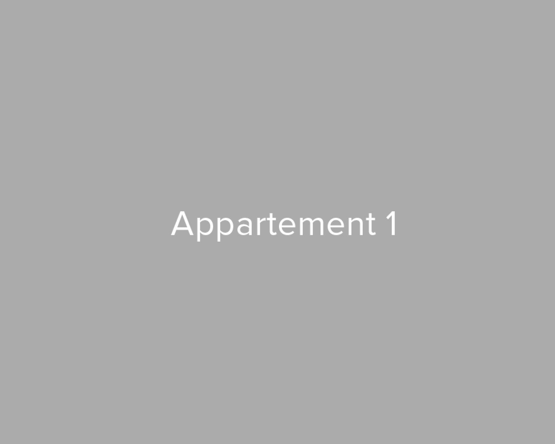 Opbrengsteigendom van 3 appartementen in het centrum van Walem! afbeelding 4