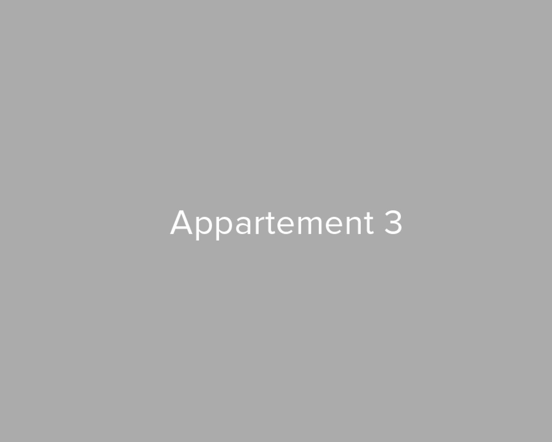 Opbrengsteigendom van 3 appartementen in het centrum van Walem! afbeelding 20