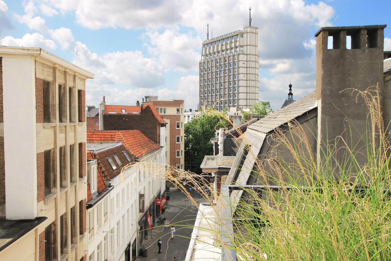 Stijlvol gerenoveerd appartement met twee slaapkamers en prachtig terras (28 m²) in het hartje van Antwerpen! afbeelding 13