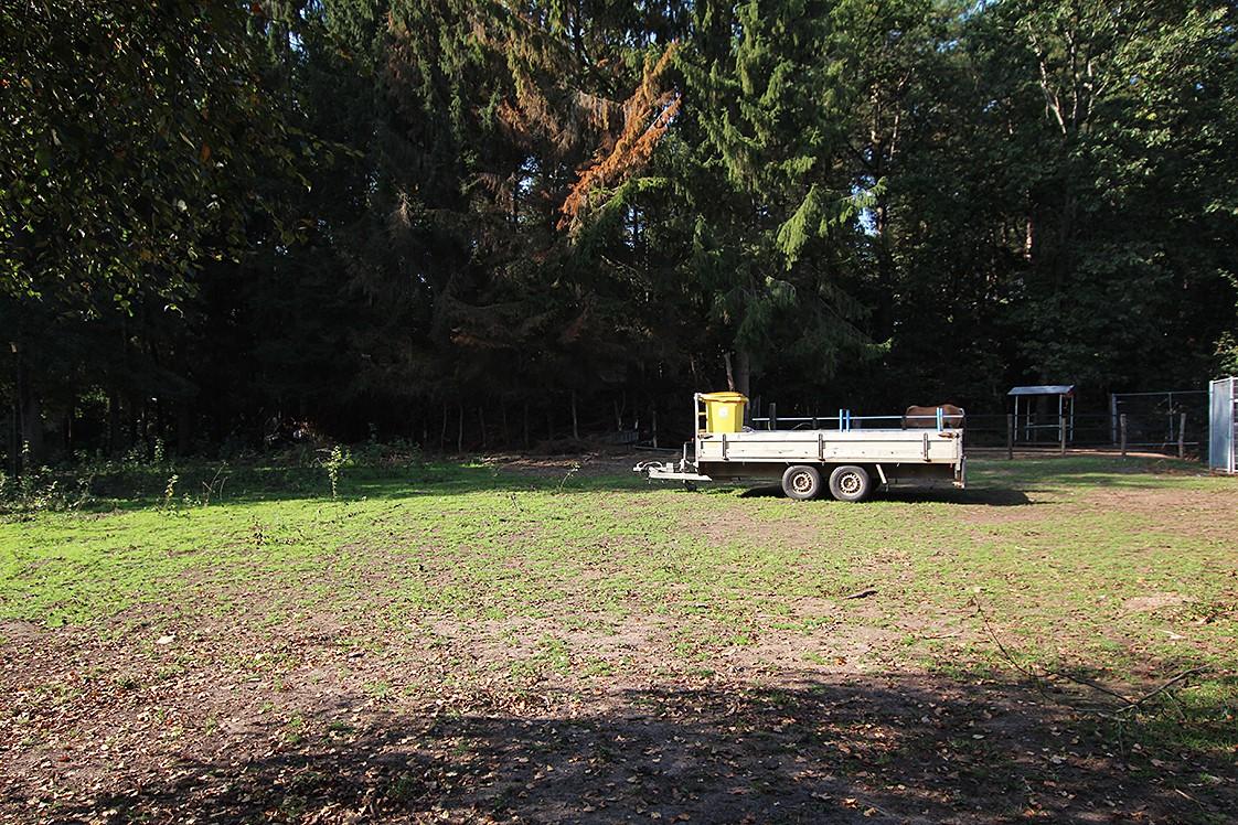 Gronden gelegen op een zeer rustige locatie te Wechelderzande! afbeelding 4