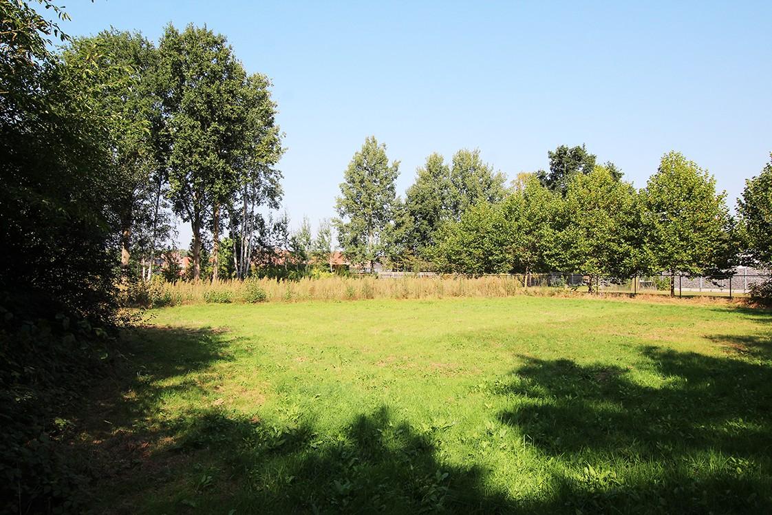Bouwgrond (1.180m²) gelegen in een groene omgeving te Zandhoven! afbeelding 1