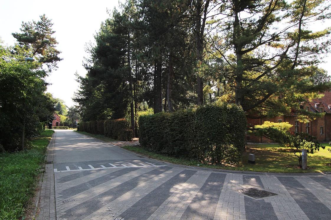 Bouwgrond (1.180m²) gelegen in een groene omgeving te Zandhoven! afbeelding 4