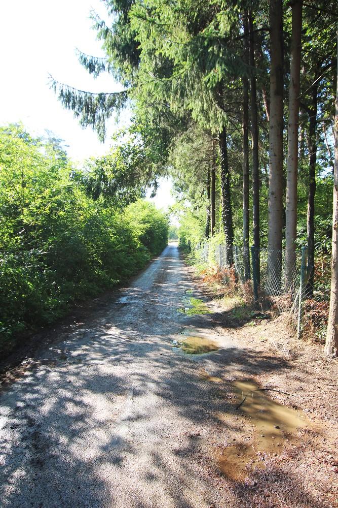 Zuid-georiënteerd perceel recreatiegrond van 1.450 m² te Herentals! afbeelding 5