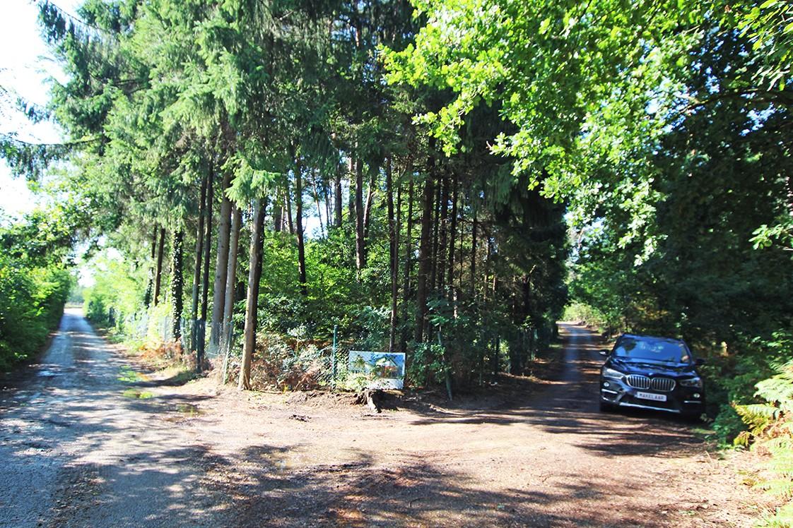 Zuid-georiënteerd perceel recreatiegrond van 1.450 m² te Herentals! afbeelding 1