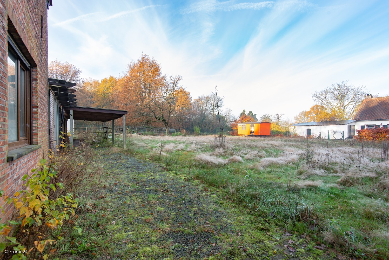 Te renoveren woning op gigantisch perceel (2300m²) te Herentals afbeelding 22