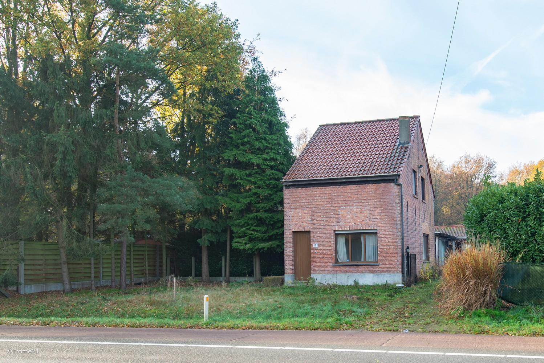 Te renoveren woning op gigantisch perceel (2300m²) te Herentals afbeelding 25