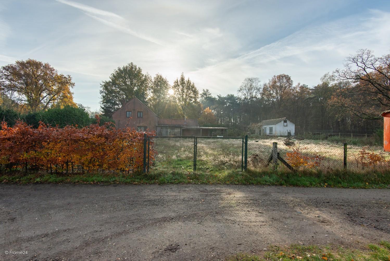 Te renoveren woning op gigantisch perceel (2300m²) te Herentals afbeelding 27