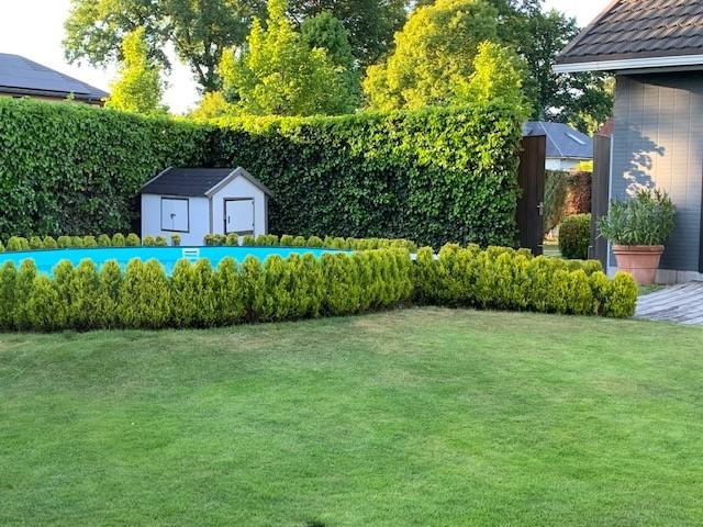 Prachtige laagbouwvilla met zwembad in een rustige en groene omgeving te Kapellen! afbeelding 18