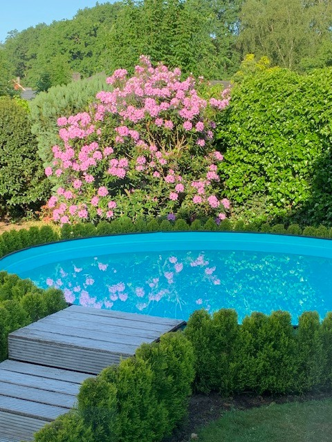 Prachtige laagbouwvilla met zwembad in een rustige en groene omgeving te Kapellen! afbeelding 17