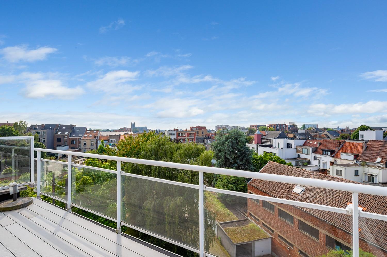 Aangename dakstudio met riant zonneterras grenzend aan Zurenborg en 't Groen Kwartier! afbeelding 8