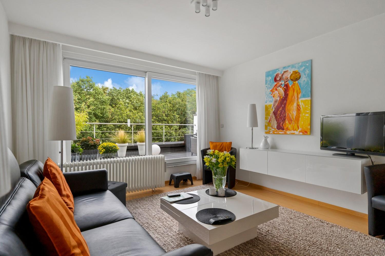 Mooi, lichtrijk dakappartement met 1 slaapkamer en ruim terras in Deurne afbeelding 1