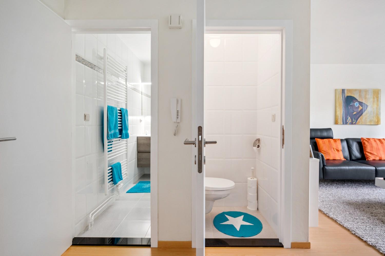Mooi, lichtrijk dakappartement met 1 slaapkamer en ruim terras in Deurne afbeelding 14