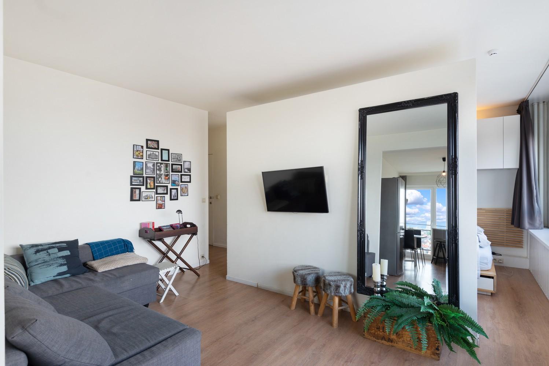Leuk één-slaapkamerappartement met indrukwekkend uitzicht over Antwerpen! afbeelding 6